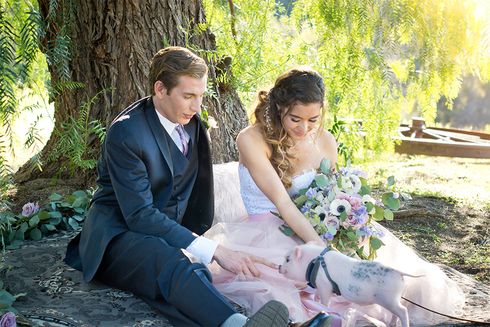San diego outdoor woodland wedding shoot bride blush pink chiffon strapless gown with a sweetheart neckline and groom navy blue shawl lapel tuxedo with a matching vest and white dress shirt with a long pink striped tie and white floral boutonniere sitting on blanket under tree bride holding white floral bridal bouquet