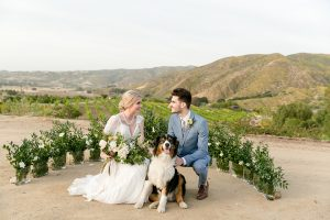 Temecula outdoor wedding at sweet oaks ranch bride a line chiffon gown with short lace sleeves and a low back design with high neckline and lace detail with groom light blue notch lapel suit with a white dress shirt and long silver tie with a white floral boutonniere with dog bride holding white and green floral bridal bouquet