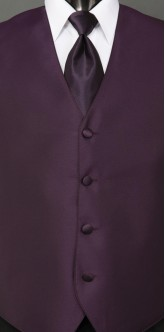 Eggplant Sterling, Solid Tie