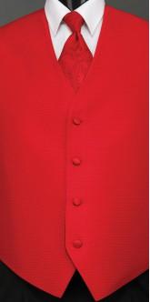Ferrari Red Sterling, Paisley Tie