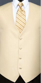Gold Sterling, Striped Tie